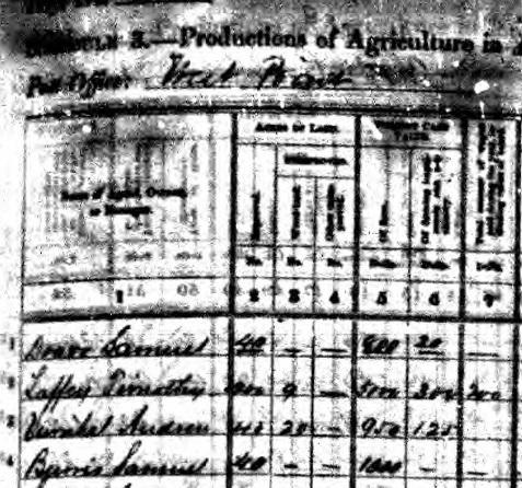 non-census